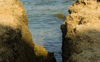 P-environment-ocean-rocks