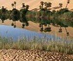 P-water-oasis-desert