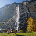 P-author-Bernese oberland-Waterfall