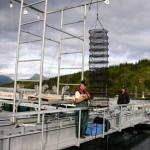 Sea Vision Ocean Farming
