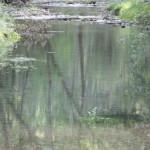 p-author-spain-river2