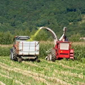 Good farming reaps bumper crops