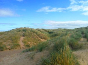 P-Birkdale Dunes - copyright NMARG