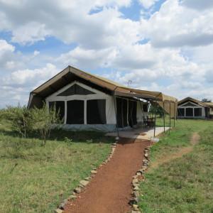 P-africa-tent-porini lion camp