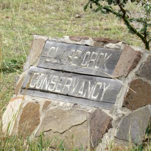 P-olareorock-stone