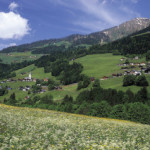 AFFORDABLE SUSTAINABILITY IN AUSTRIA
