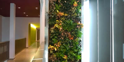 P-author-livingwall
