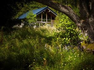 Strathyre Cabin Forest Holidays