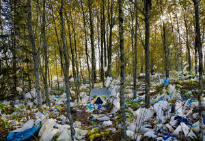 plastic bags, blown, in the forest, environment,