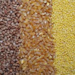 Grains are a source of good carbohydrate