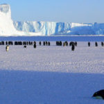 ANTARCTICA AND THE HEROIC AGE