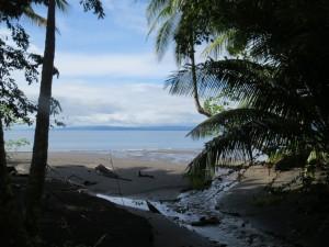 Playa Cativo