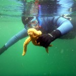 ADVENTURE SNORKELLING IN THE OUTER HEBRIDES