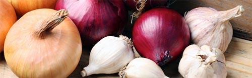 P-food-vegetables-onions-garlic