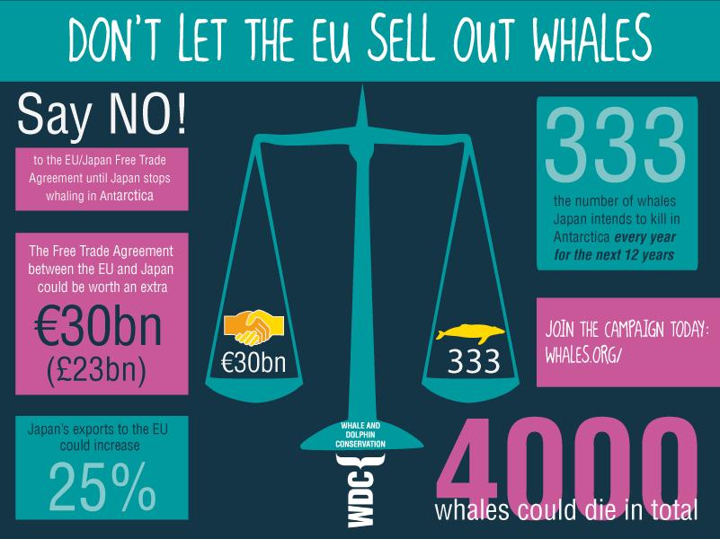 whaling-eu-infographic