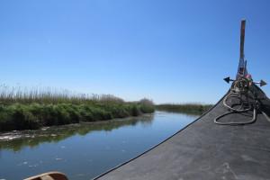 Moliceiro boat trip BioRia (2)